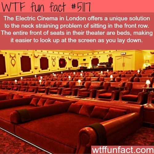 The Electric Cinema In London Wtf Fun Facts Fun Facts Bed