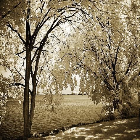 size: 16x16in Photo: Hopewell Shores Sepia Sq I by Alan Hausenflock :