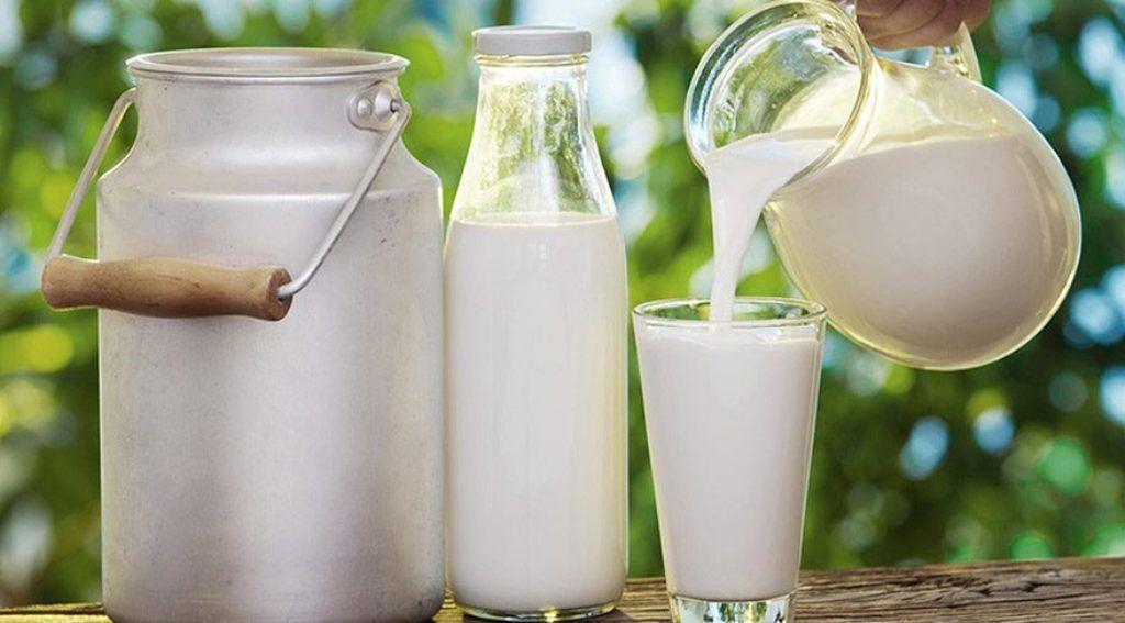 Çiğ süt ve buzağı desteklemeleri ödeniyor