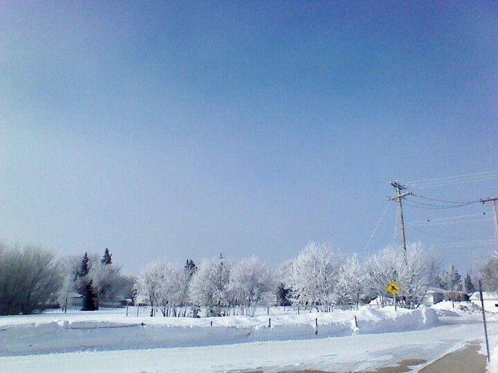 Spring in Saskatoon 2013