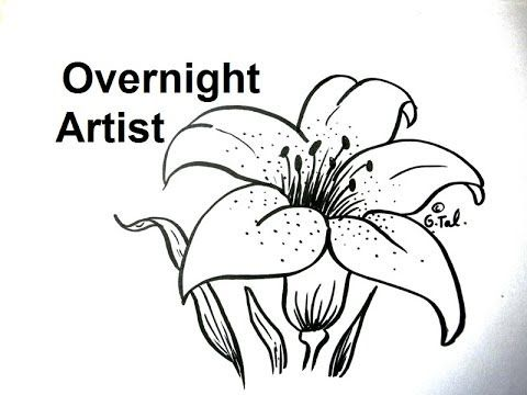 Pin By Danielle Batog On Art Journal Videos Volume One Lilies Drawing Flower Drawing Easy Flower Drawings