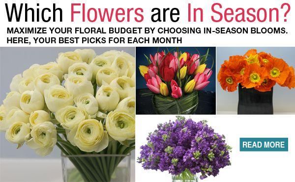 which flowers are in season weddings wedding flowers. Black Bedroom Furniture Sets. Home Design Ideas