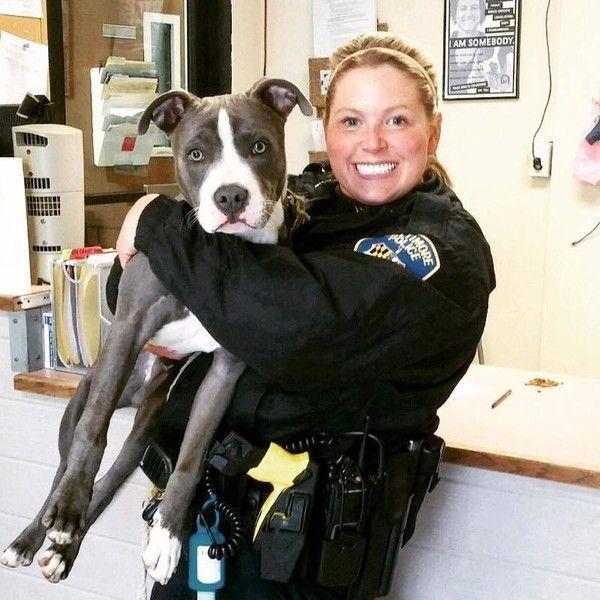 Cop Finds Dog In Abandoned House And Decides To Keep Him Forever