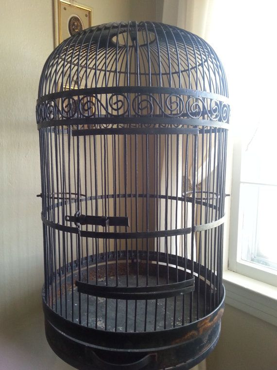 Wrought Iron Bird Cage Metal Bird House Vintage Bird Stand Bird Cages For Sale Small Bird Cage Bird Cage Stand