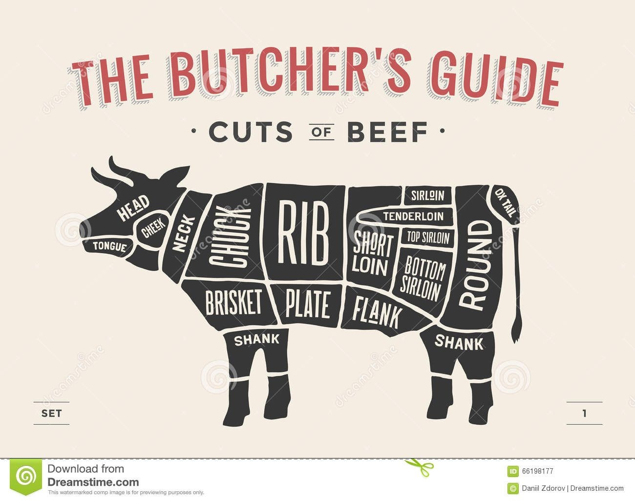 Cut of beef set poster butcher diagram and scheme cow vintage poster butcher diagram and scheme cow vintage typographic hand drawn vector illustration download from over 61 million high quality stock photos ccuart Images