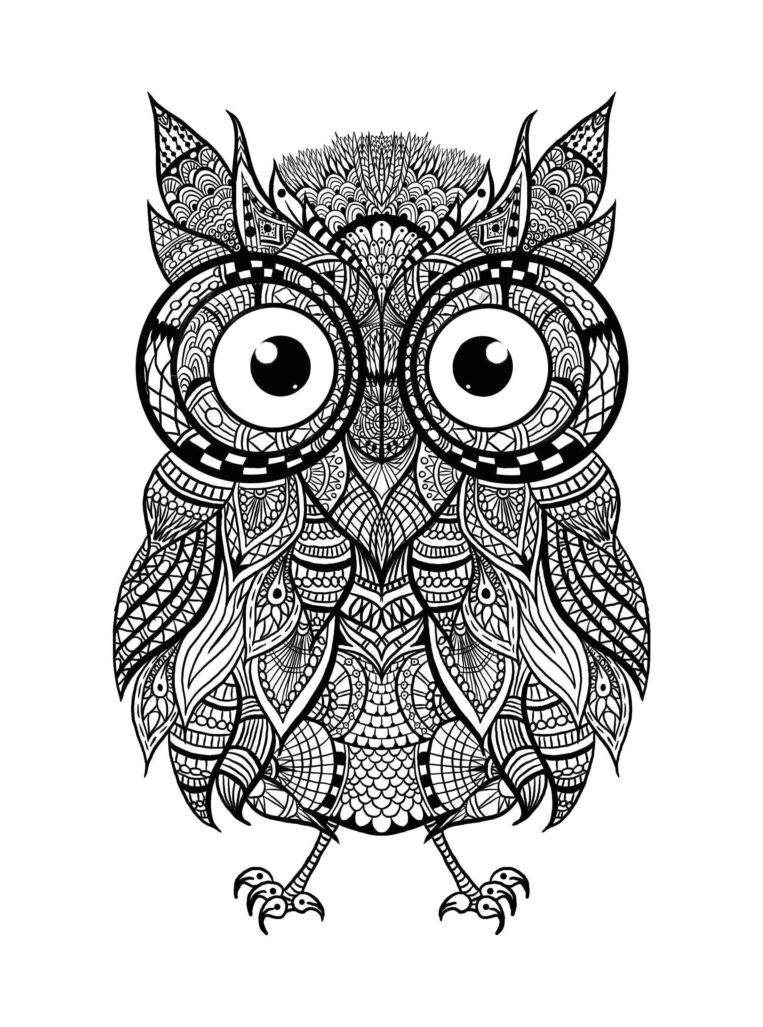Hey everyone! Check out this awesome intricate owl for ...