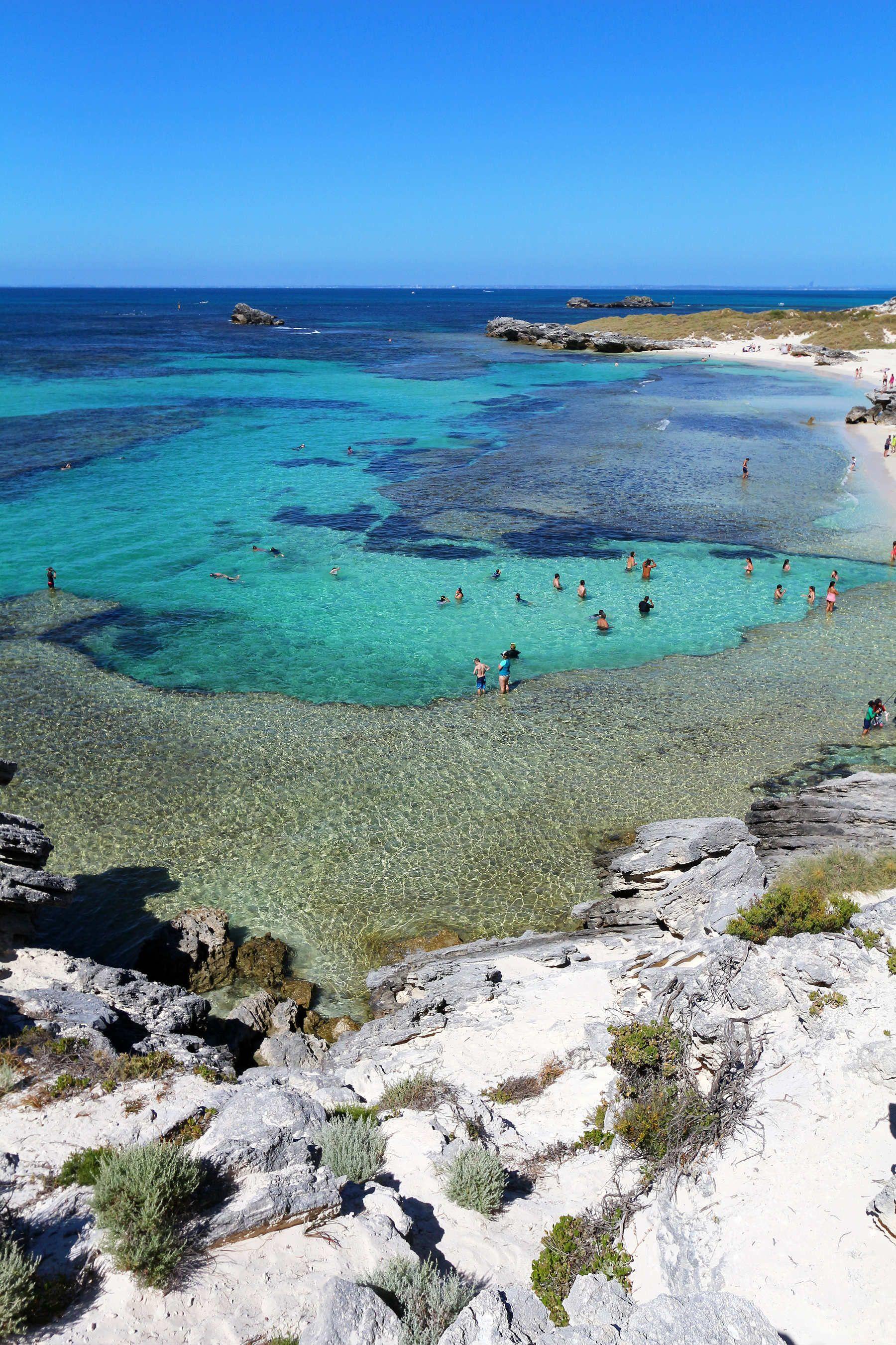 Che ne direste di immergervi nella più bella natura australiana, costeggiando paesaggi mozzafiato e gustandovi i prodotti tipici eccezionali?