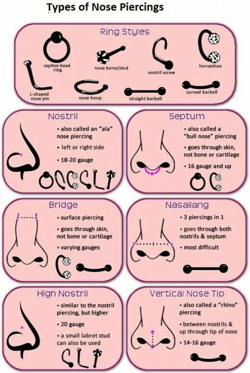 Tipos De Piercing De Nariz Piercings Nariz Grafico De Perforar