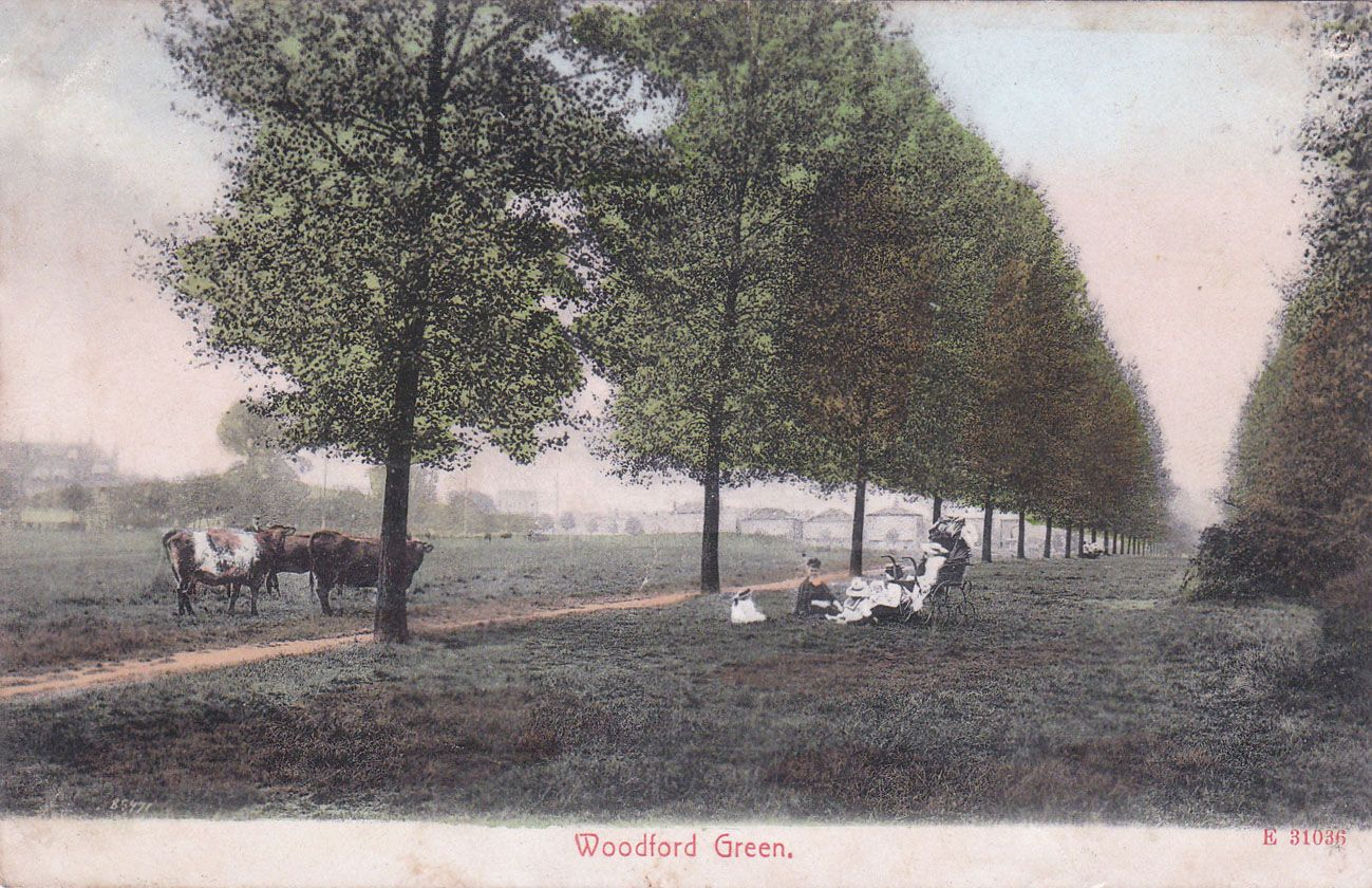 Postcard of Woodford Green.1905.