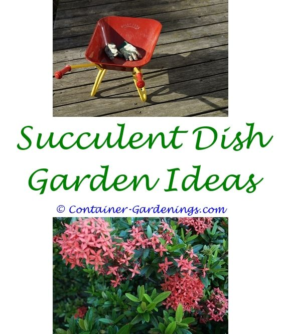 Garden Accessories line
