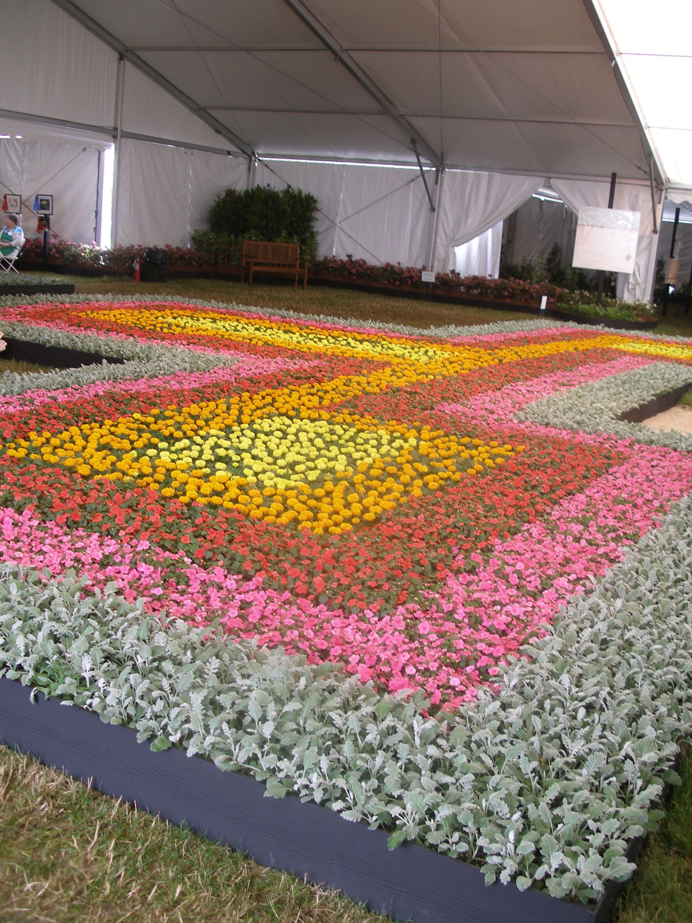Flower Carpet Design In The Garden Creatures Carpet