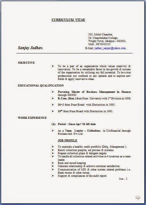 how to construct a cv Sample Template Example ofExcellent CV - how to construct a resume