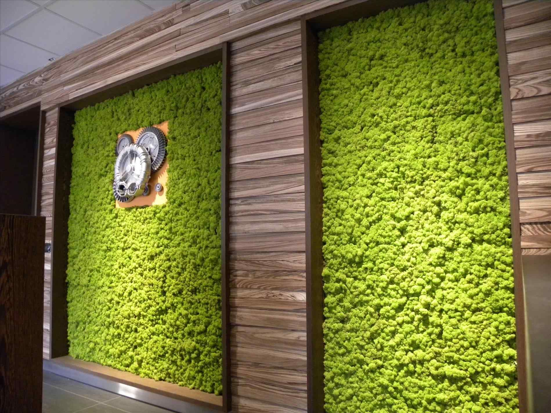 20 diy indoor moss wall for you home inspiration
