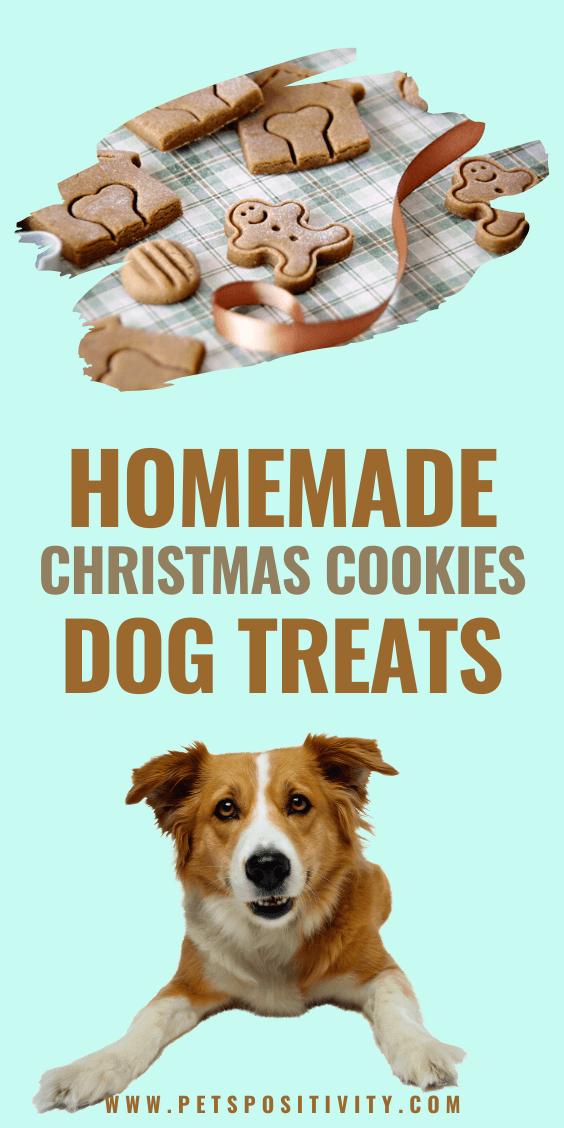 COOL HOMEMADE CHRISTMAS COOKIES DOG TREATS