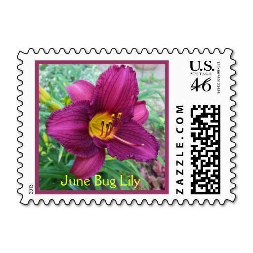June Bug Lily Postage Stamp