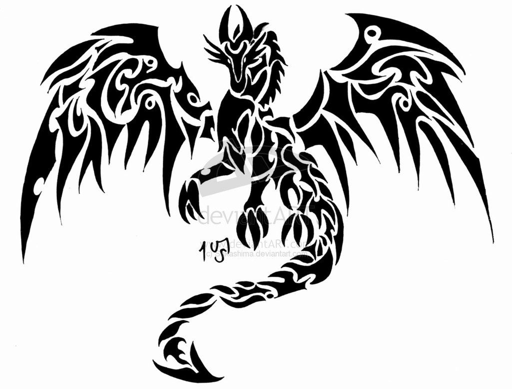 Tribal Celtic Dragon Tattoo Designs