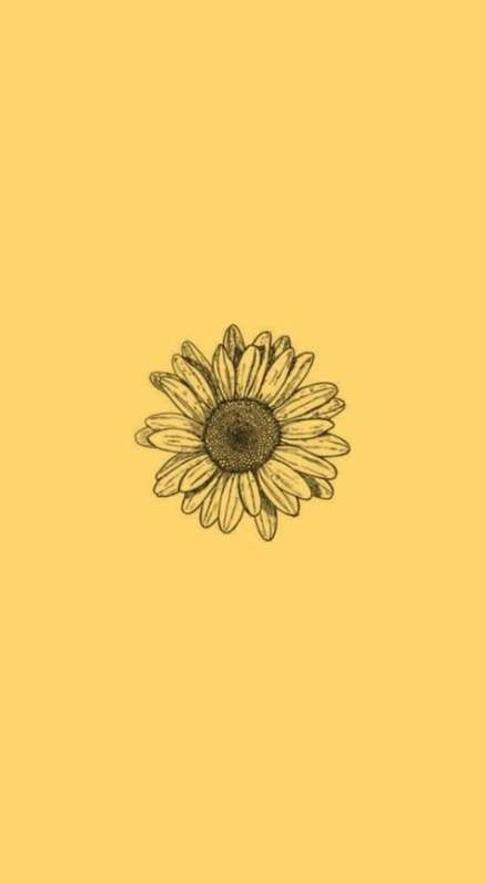 Cute Aesthetic Wallpaper Sunflower 66 Ideas