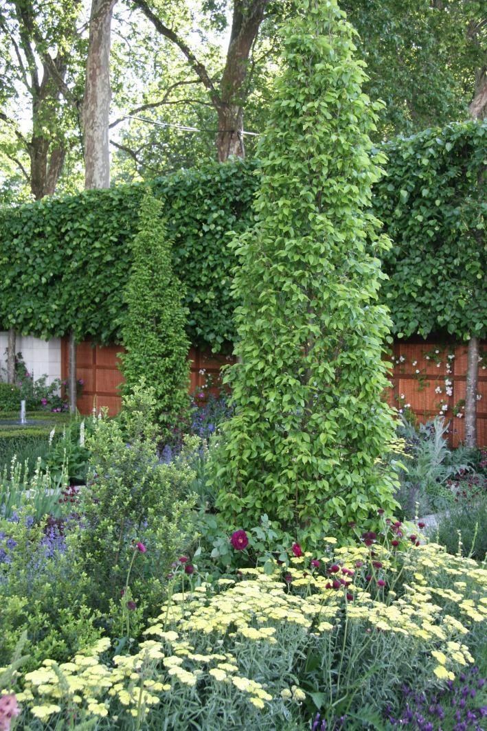 Hausbäume Für Kleine Gärten