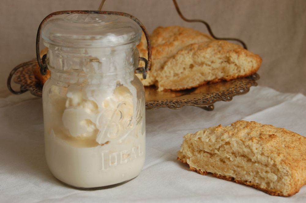 Clotted cream scones and clotted cream clotted cream