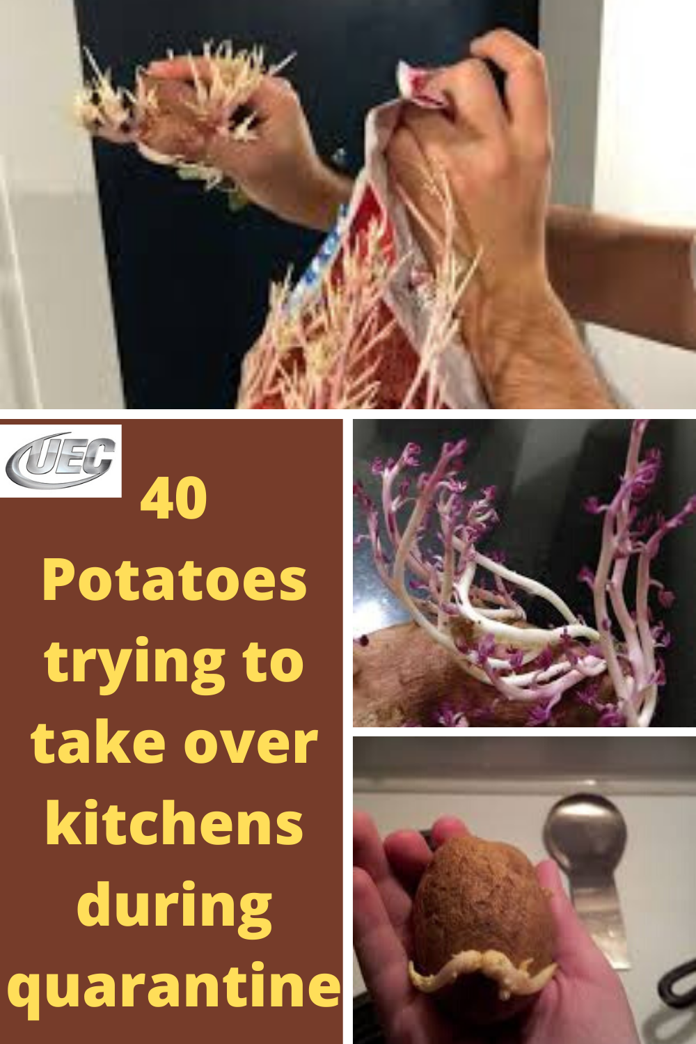 According to experts, the potato is the second-most consumed food in the US. Just imagine, the average person eats 135 pounds of this vegetable every year.