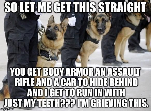 Whoops Police Dogs Police Dogs Humor K9 Police Dogs