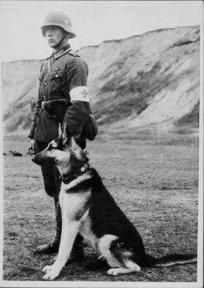 Dog Soldiers Stream Deutsch