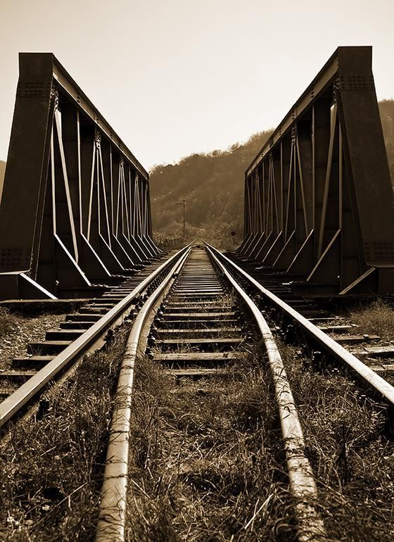 Train Tracks Wall Art | Train tracks, Abandoned train ...