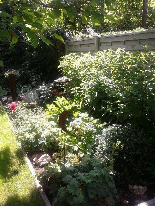 Garten und Pflanzen - Neu angelegt.