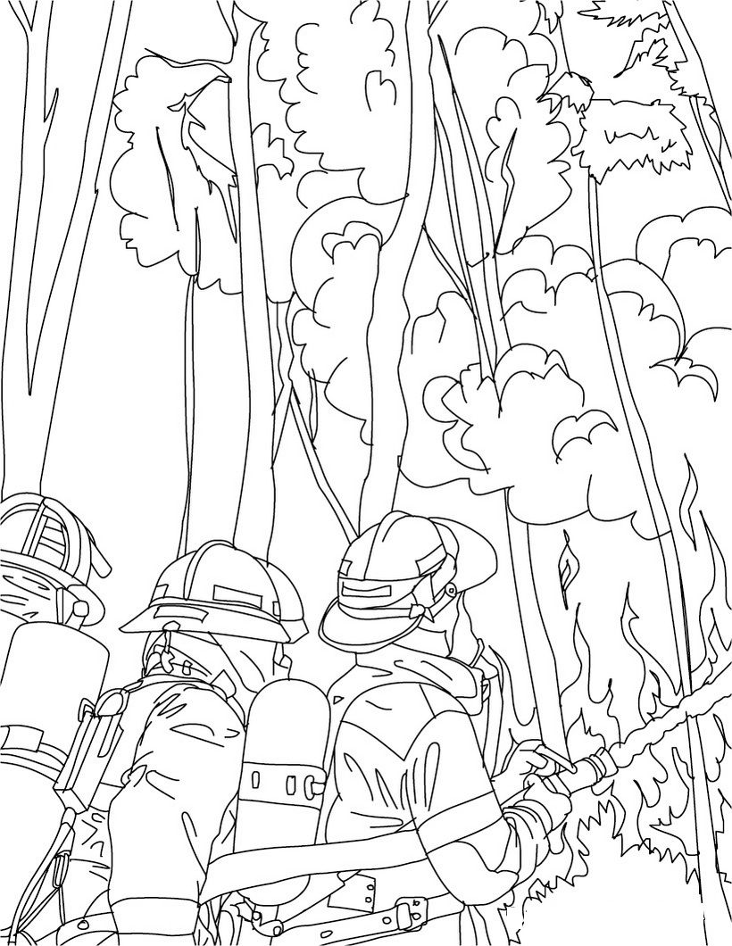 forest fire coloring pages  google search  coloring