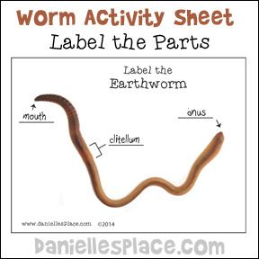 Danielle S Place Of Crafts And Activities Worm Crafts Printable Activities For Kids Science For Kids