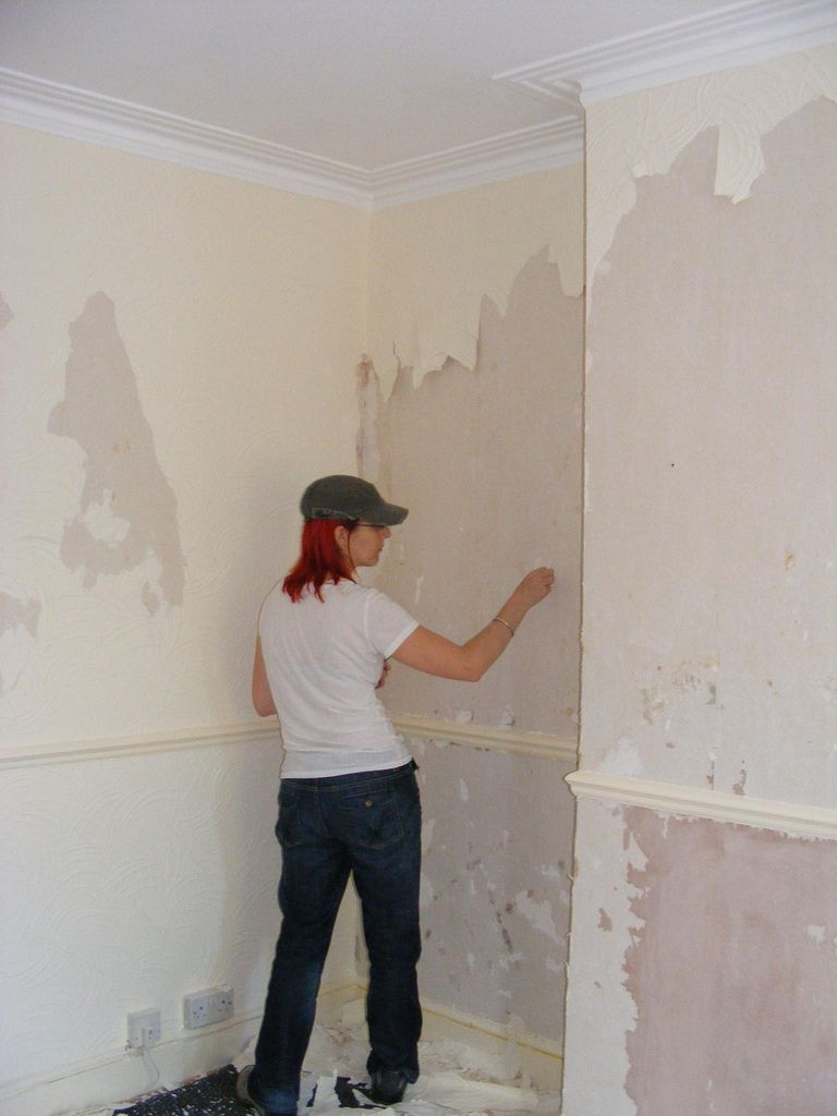 How to get rid of wallpaper - 17 Best Images About Remove Wallpaper On Pinterest Remove Wallpaper To Remove And How To Remove