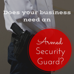 We have developed a multifaceted infrastructure facility today for providing best in class Armed Security.