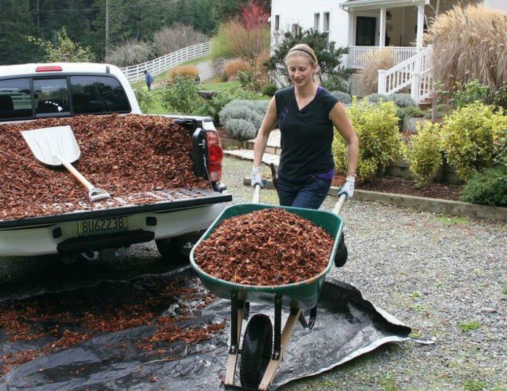 s see how 11 clever gardeners get their yards ready for fall, gardening, They add mulch to reduce weeds