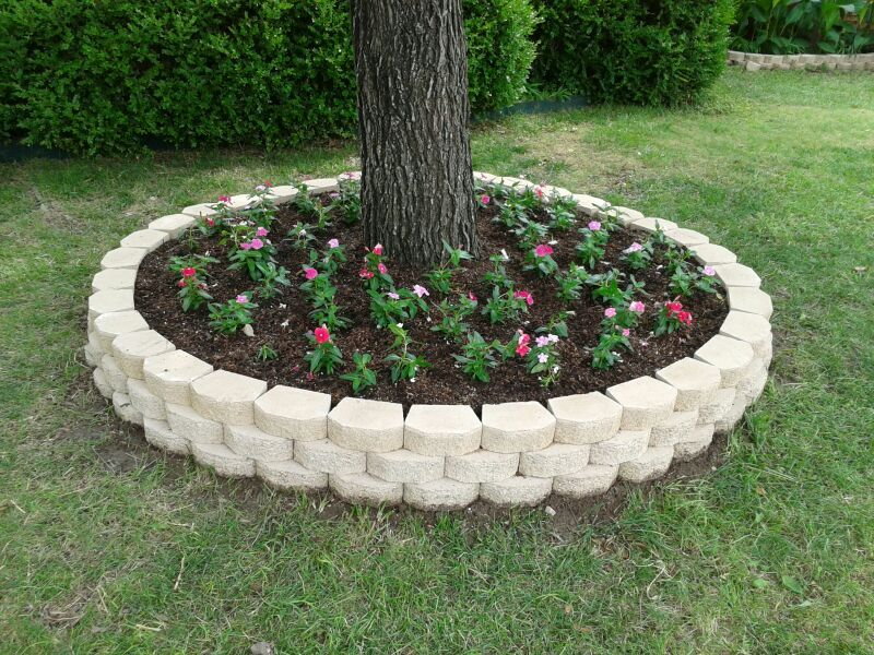 Front Annual Bed With Cora Vinca In Various Colors Outdoor Gardens Design Front Yard Landscaping Design Backyard Landscaping Designs