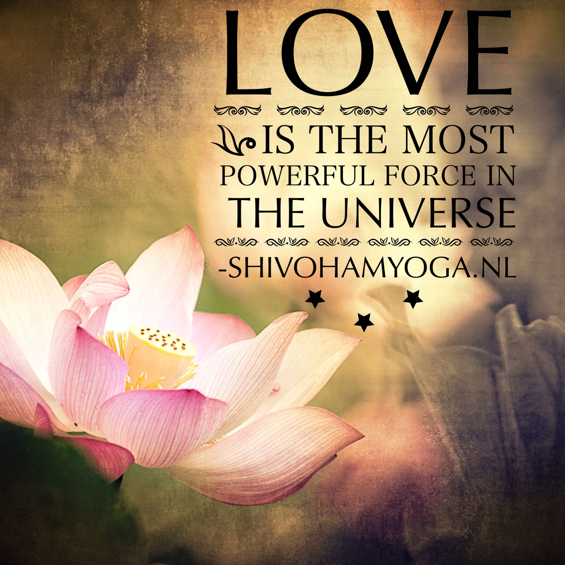 Love Each Other When Two Souls: Pin By Shivoham Healing House Of Love On SHIVOHAM ॐ Yoga