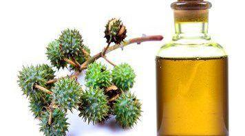 ما هي أضرار شرب زيت الخروع Castor Oil Uses Castor Oil Oil Uses