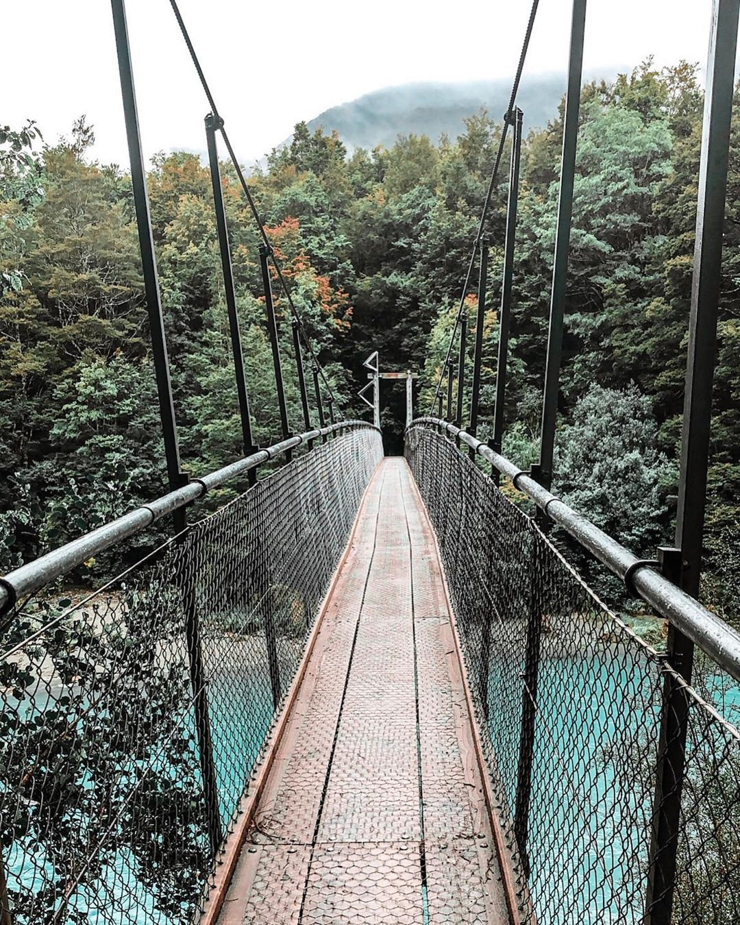 Drive From Queenstown To Franz Josef Was Absolutely Gorgeous Stopped By The Blue Pools Amp Was Amazed By Its Beauty Blue Pool Queenstown Tours