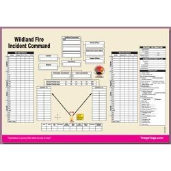 Disaster Management Systems Inc Disaster Management Organizational Tool Wildland Fire Organizational