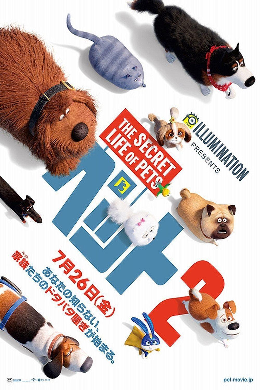 The Secret Life Of Pets 2 Filme Cmplet Dublad Nline Secret Life Of Pets Secret Life Pets