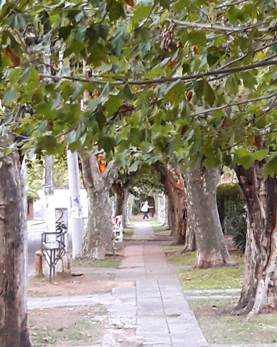 Ciudad Jardín Lomas Del Palomar 15 Tips Ciudad Jardin Palomar Ciudades