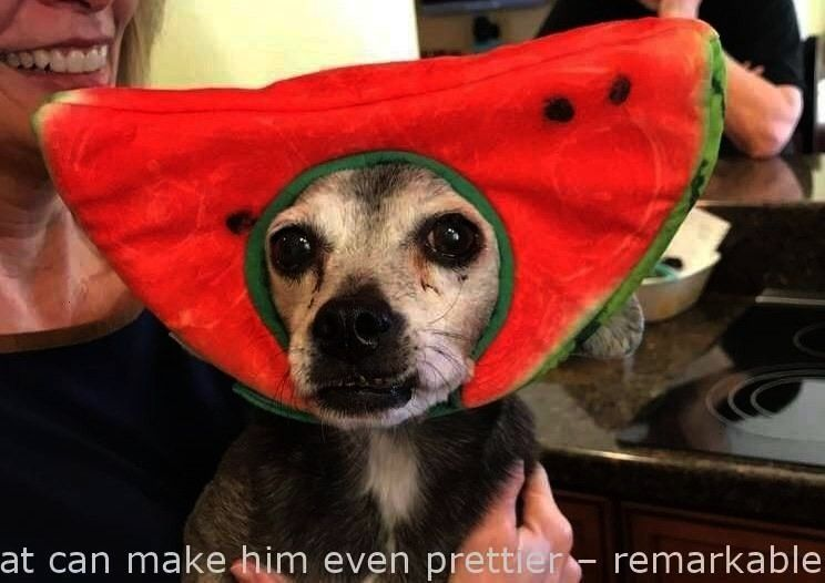 The watermelon hat tends to make him even prettier – beautiful   - The watermelon hat tends to ma
