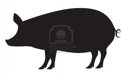 Pig silhouette isolated on white Stock Photo - 17177585