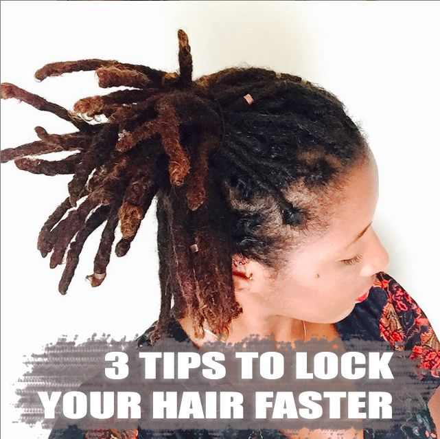3 Tips To Lock Your Hair Faster Curlynugrowth Natural Dreads Hair Locks Dreadlock Maintenance