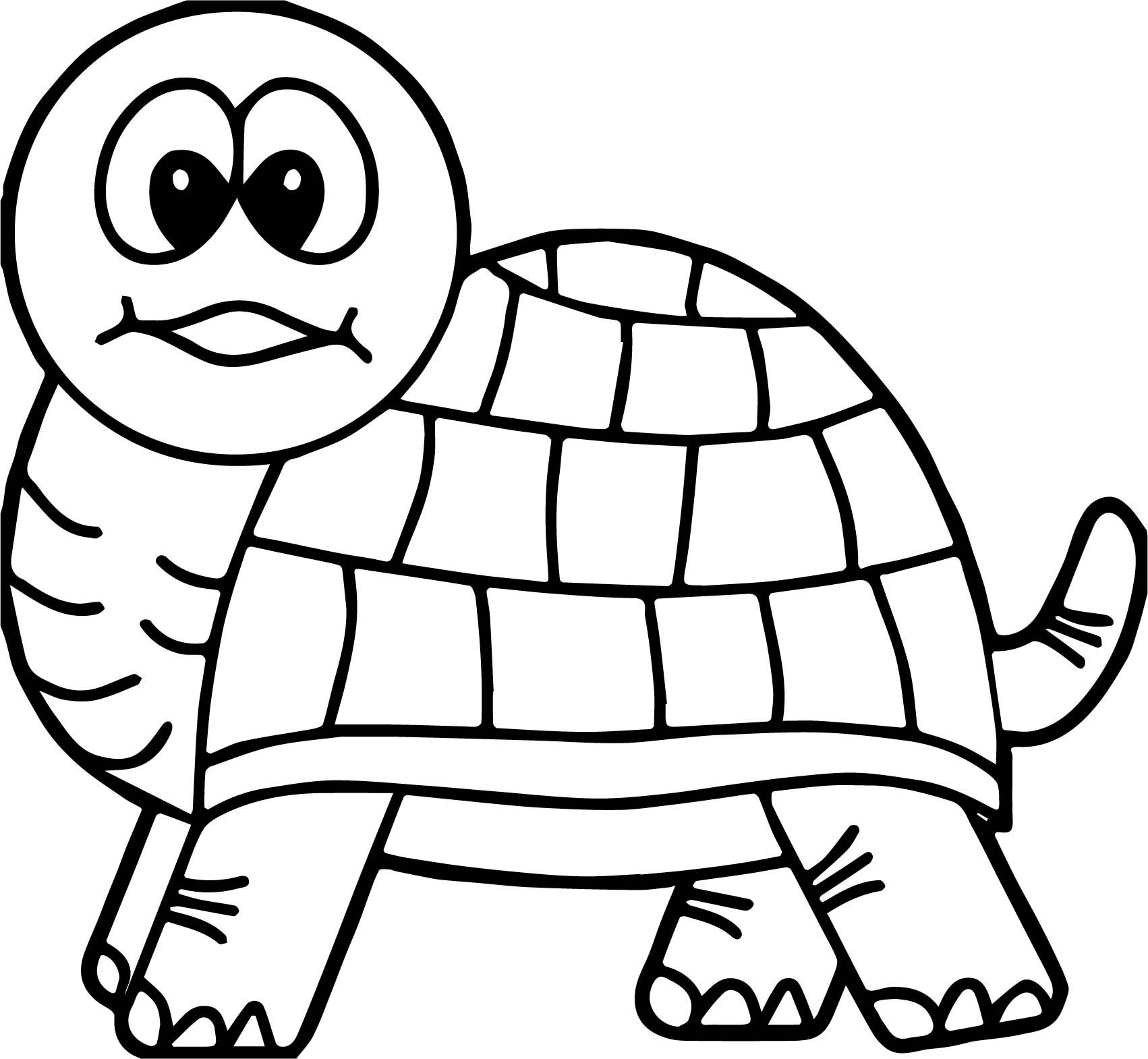 Cool Tortoise Turtle Look Coloring Page