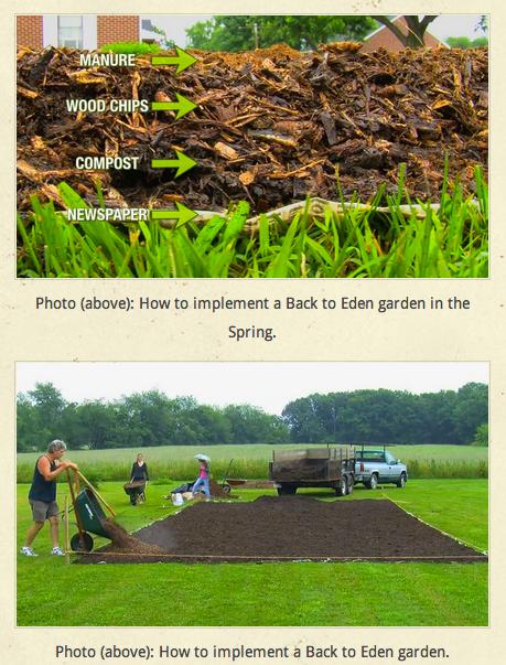 eden gardening: transforming immediately, but for the long ...