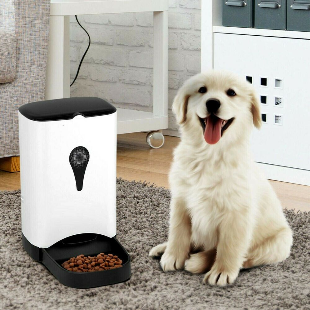 Automatic pet feeder station for dog cat programmable dry