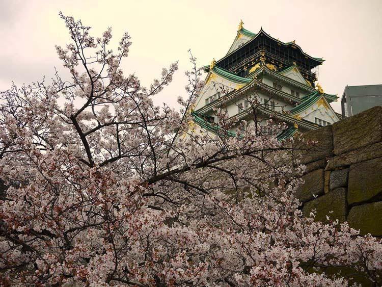 Osaka Castle ???