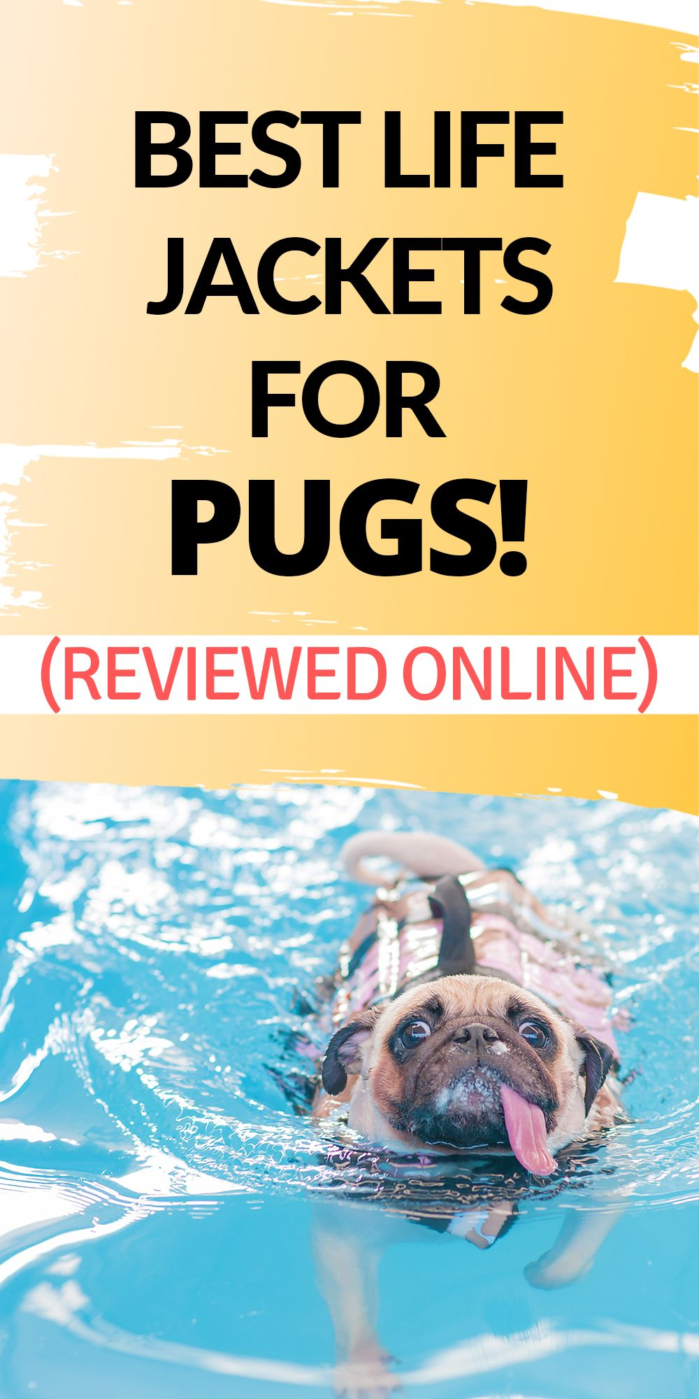 5 Of The best dog life jacket for Pugs. We've reviewed