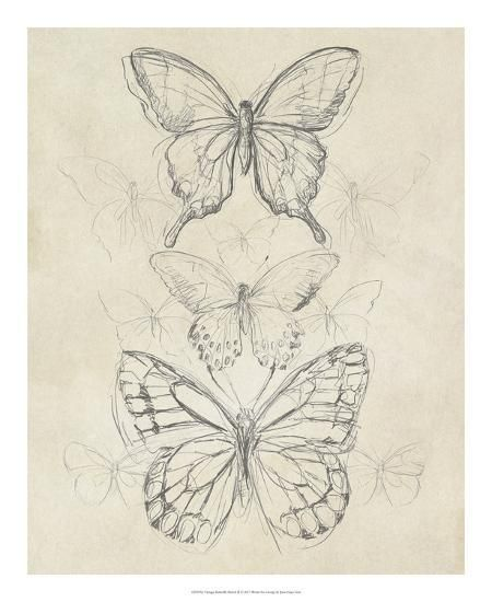50 Best Pencil Drawings 'Vintage Butterfly Sketch II' Giclee Print – June Erica …