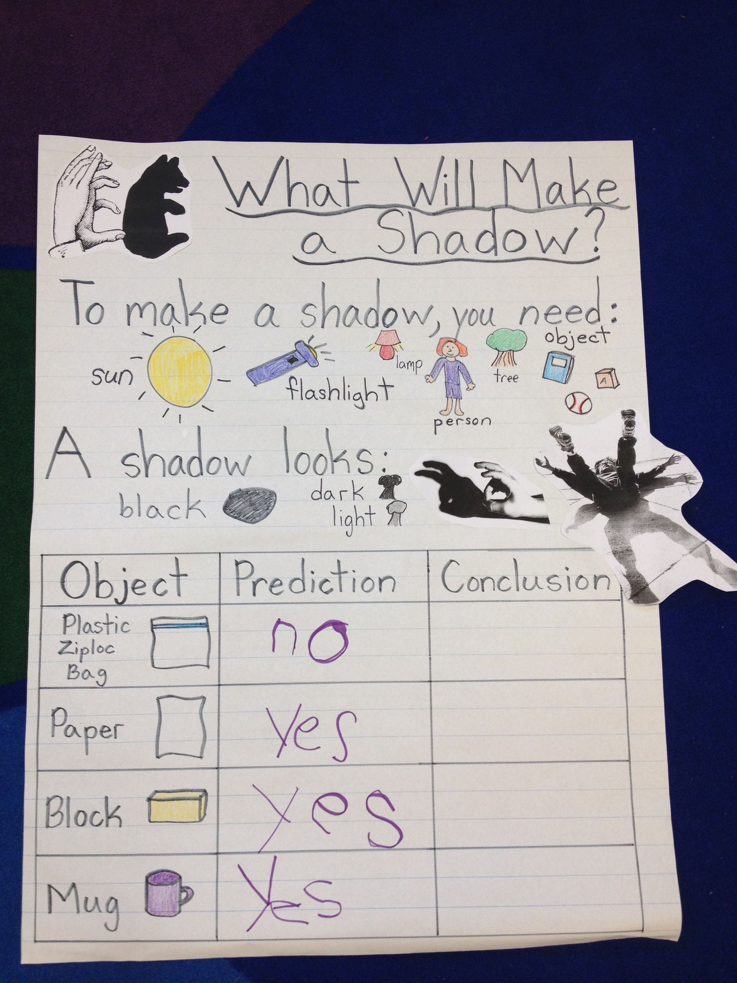 Shadow Chart I Made For Science Goes With Worksheets I Am Selling On Teacherspayteachers